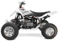 ATV FXR125 PITSTERPRO-dirt-bike-store
