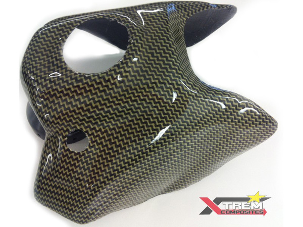 Carbon cover for LXR tank PITSTERPRO